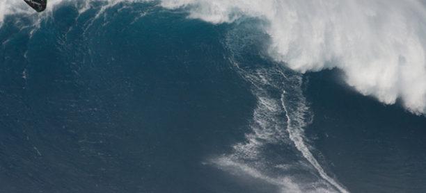 Niccolo Kites Jaws