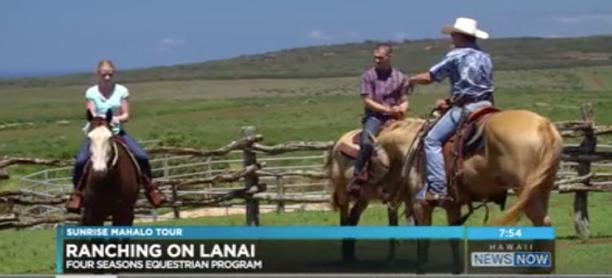 Lanai Horseback Story makes the news