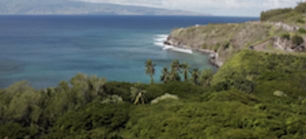 Pu'u Kukui Watershed Partnership